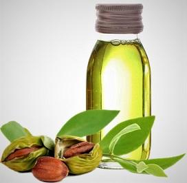 L'huile de jojoba : votre alliée de beauté