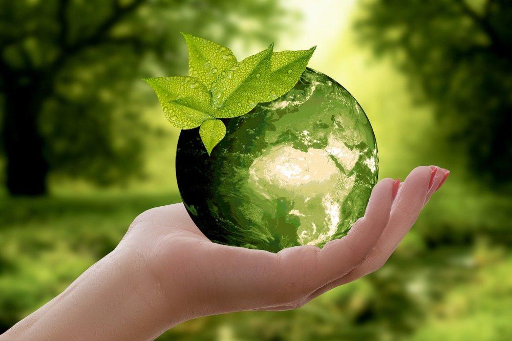 Pourquoi et comment devenir éco-responsable ?