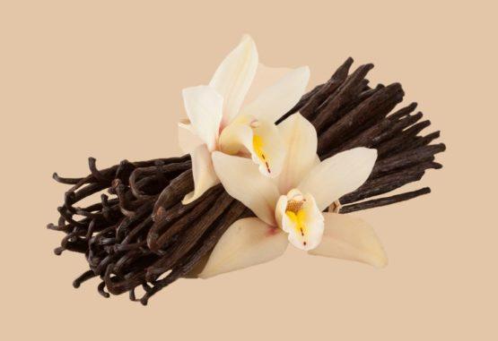 Les apports nutritifs de la vanille de Madagascar